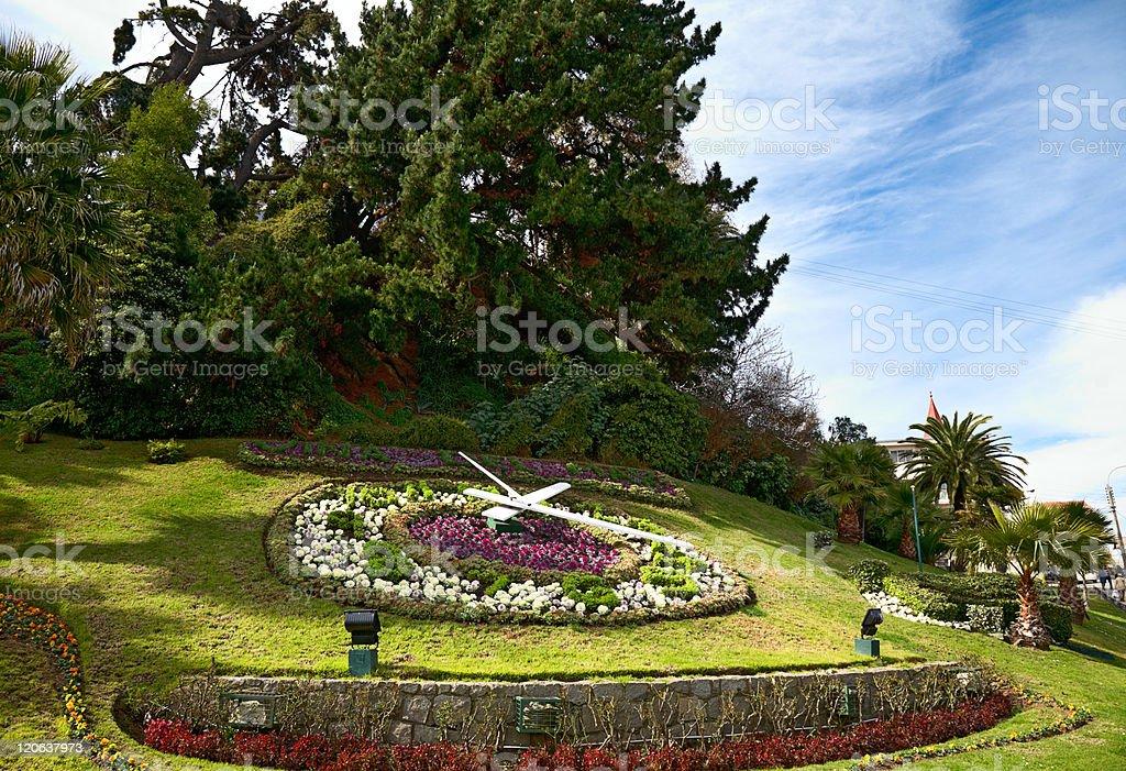 large flower clock in Vina del Mar, Chile stock photo