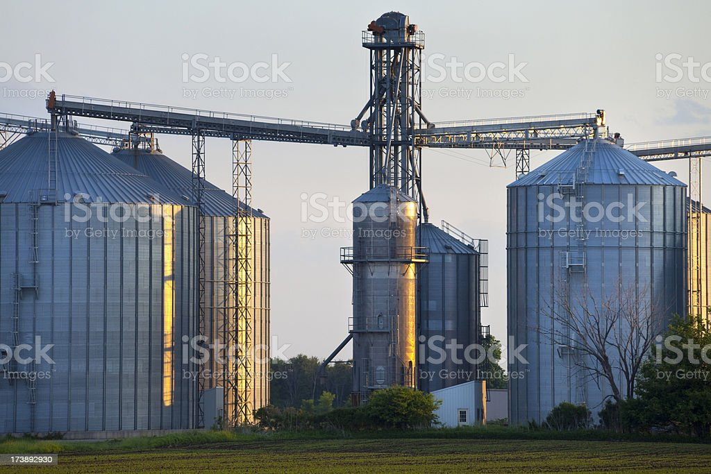 Large Grain Elevator For Agricultural Storage, USA, Midwest, Dusk, Dawn royalty-free stock photo