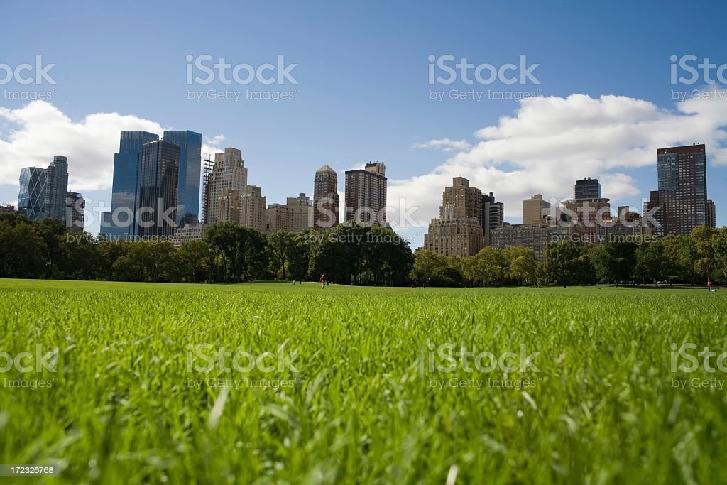 Large green meadow with city landscape in background royalty-free stock photo