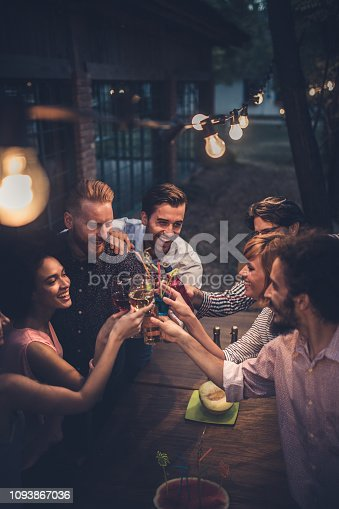 Group of happy friends toasting with alcohol during a party in the backyard.
