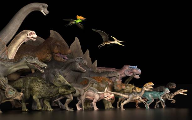 große gruppe von dinosauriern stehen zusammen auf schwarzem boden linke seitenansicht 3d render - dinosaurier illustration stock-fotos und bilder
