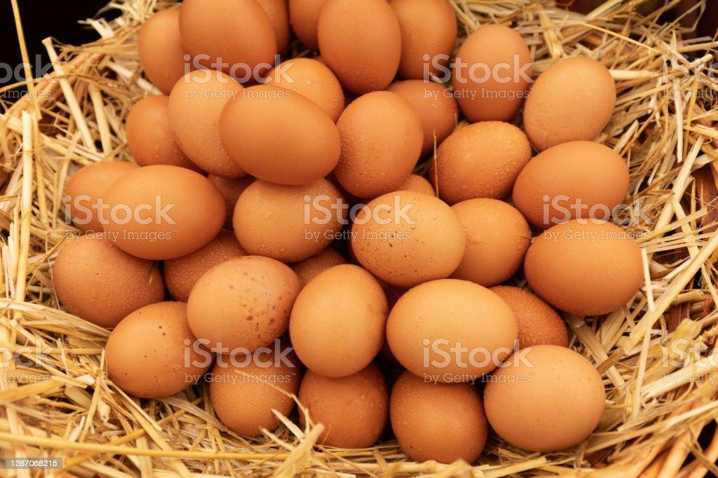 Large group of egg stacked on straw oeufs frais empilés sur de la paille, il y a des gouttes d'eau sur les oeufs Agriculture Stock Photo