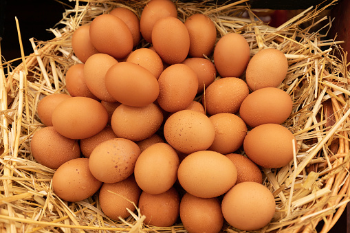 Large Group Of Egg Stacked On Straw Stock Photo - Download Image Now