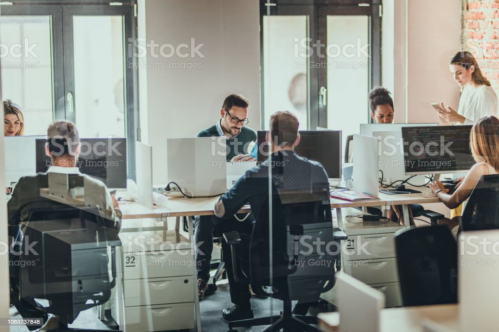 Large group of programmers working on desktop PCs in the office. Large group of computer programmers working in the office. The view is through glass. Adult Stock Photo