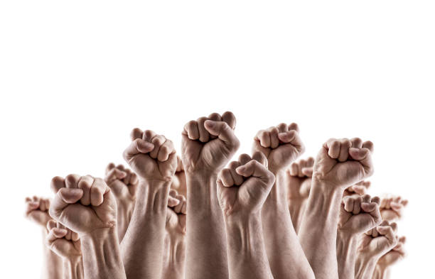 Large group of raised hands showing fists isolated on white background stock photo