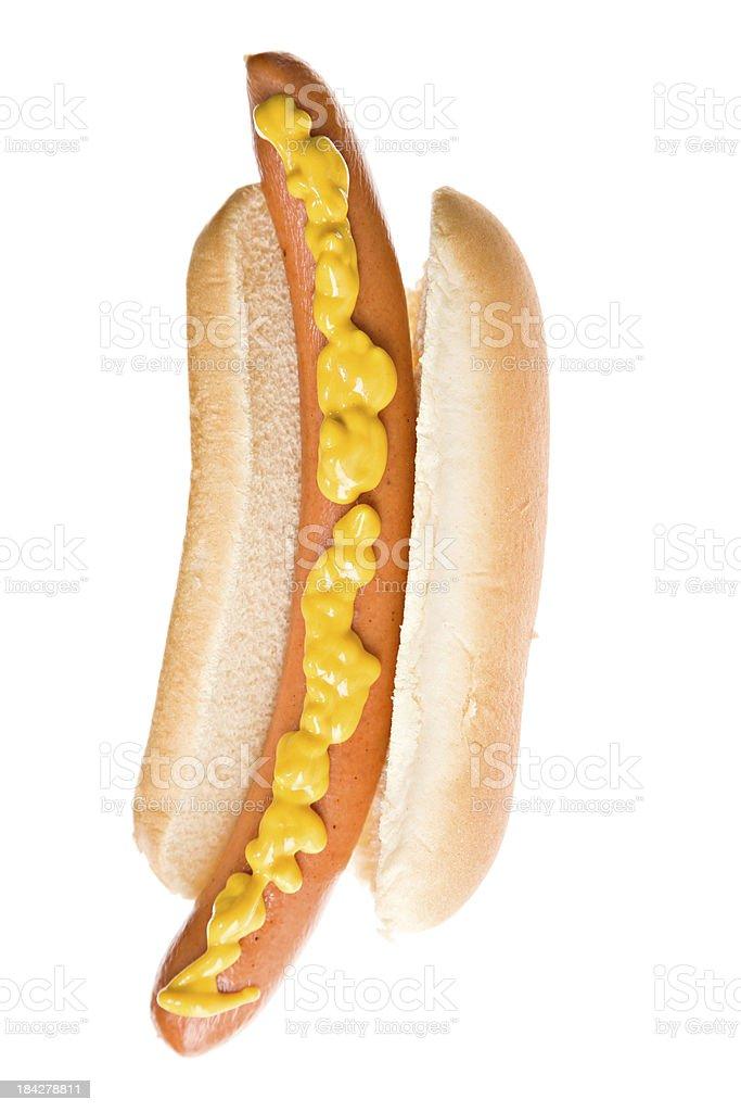 Large Hotdog stock photo