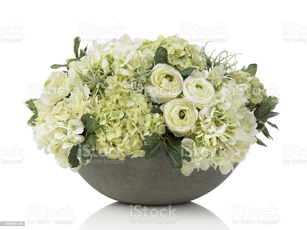 Large hydrangea bouquet in concrete bowl on white background stock photo