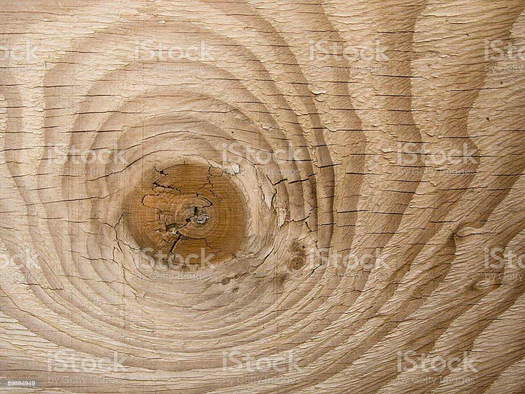 Große Knoten in hellem Holz Platte Lizenzfreies stock-foto
