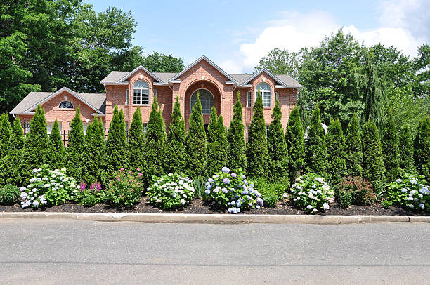 Large Luxury Home secluded by Evergreens Rhododendrons stock photo