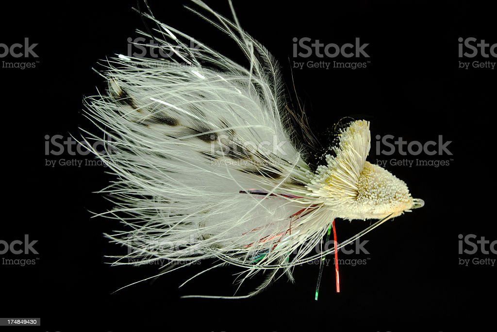 Large Magnified Fishing Fly royalty-free stock photo