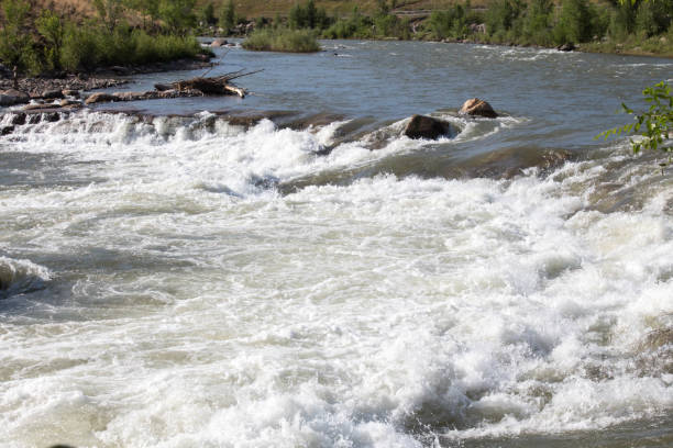 Large man made rapid in the Animas River in Durango, Colorado Large white water rapid in the Animas river in Durango, Colorado animas river stock pictures, royalty-free photos & images
