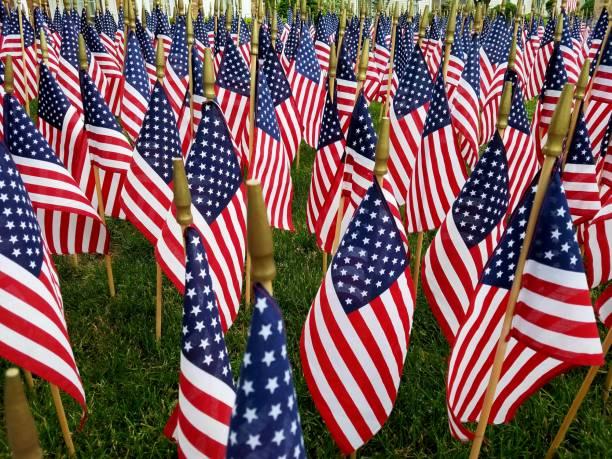 a large mass grouping of american flags - veterans day стоковые фото и изображения
