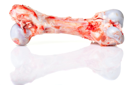 Large, meaty bone for a dog on white background.