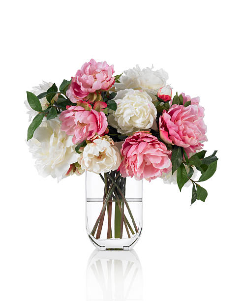 large mixed peonies spring bouquet on white background - vase stock pictures, royalty-free photos & images