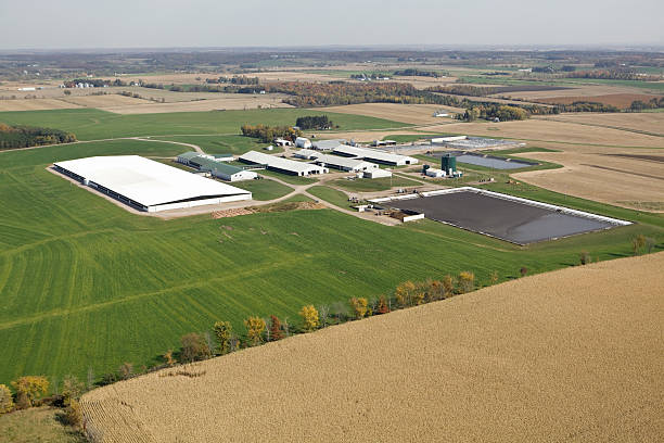 grande moderno caseificio operazione aerea autunno - laguna foto e immagini stock