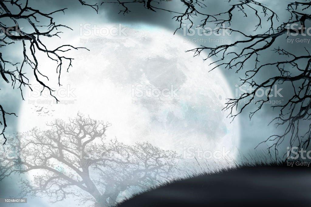 Large Moon Rises Over Small Hill Framed By Bare Trees - Zbiór zdjęć royalty-free (Bez ludzi)
