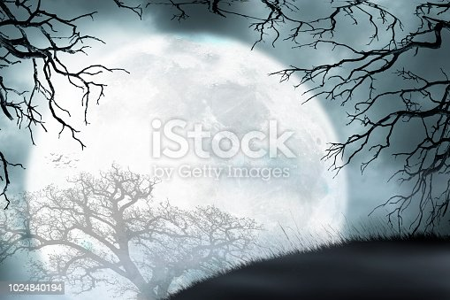 A large full moon rises over a small grassy hill as it is framed by the bare branches of two trees.