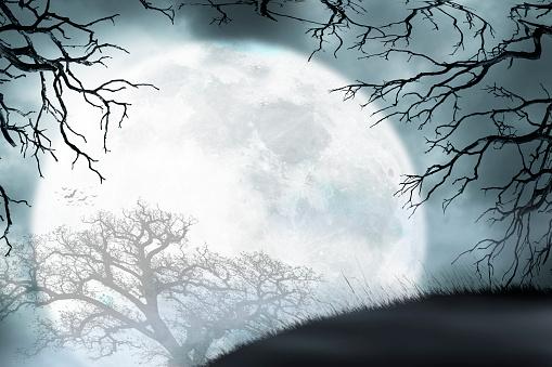 Large Moon Rises Over Small Hill Framed By Bare Trees - zdjęcia stockowe i więcej obrazów Bez ludzi