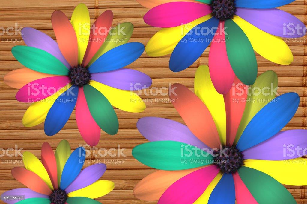 Large multi-colored petal daisy Стоковые фото Стоковая фотография