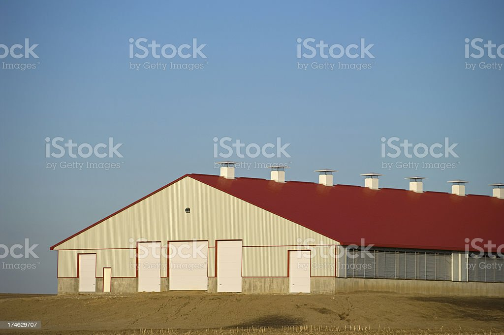 Large New Cattle Barn stock photo