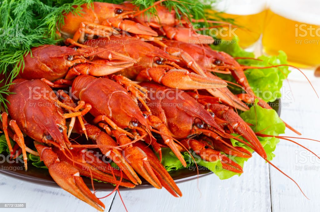 A large pile of boiled crawfish on a ceramic plate,  glasses of beer on a white wooden background. Close up stock photo