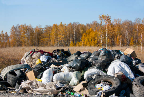 A large pile of garbage in the autumn forest. Tires, plastic bags in white and black, bottles, bags, boxes. Environmental pollution stock photo