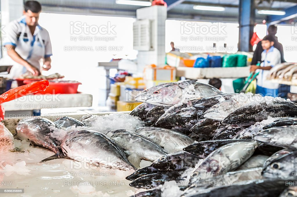 Large pile of Salmon on the selling table. stock photo