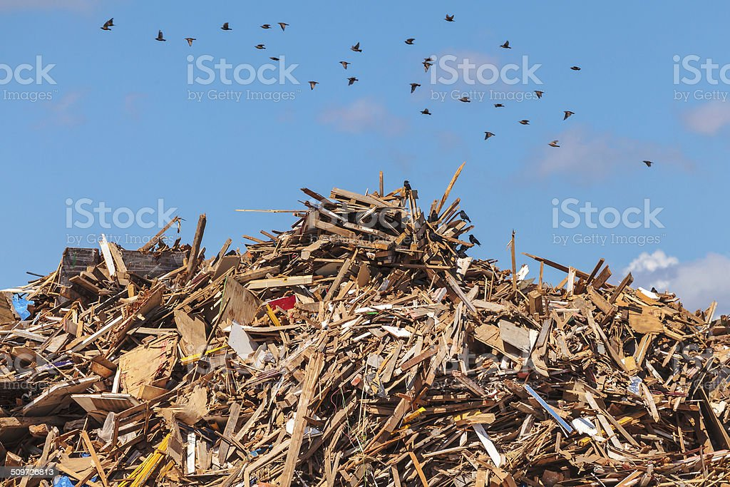 Large pile of wood on a garbage depot stock photo