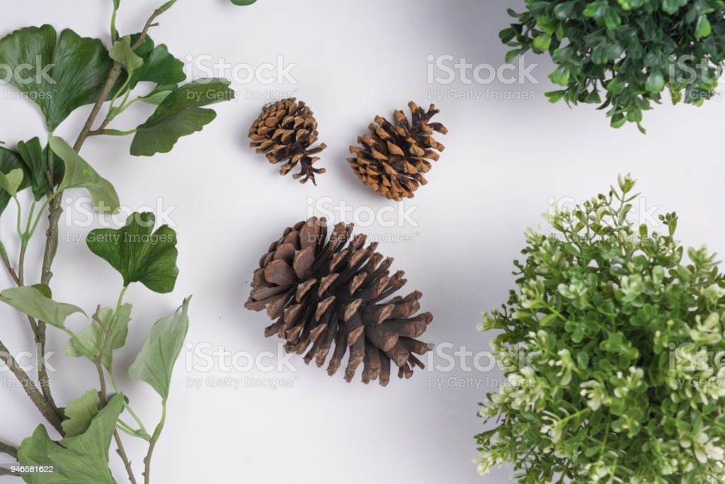 large pine cones with foliage flat lay top view royalty free stock photo - Decorating Large Pine Cones For Christmas