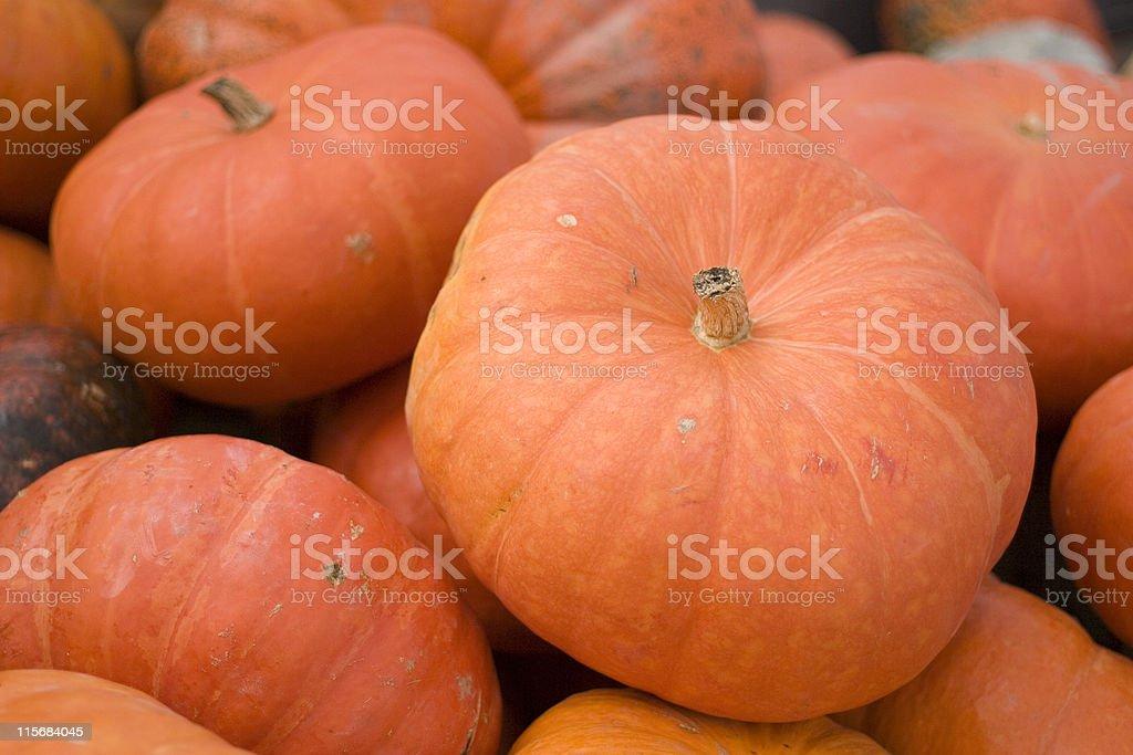 Large Pumpkins royalty-free stock photo