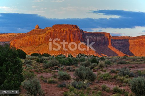 Large red mesa lit by the evening sun with various desert plants in the foreground