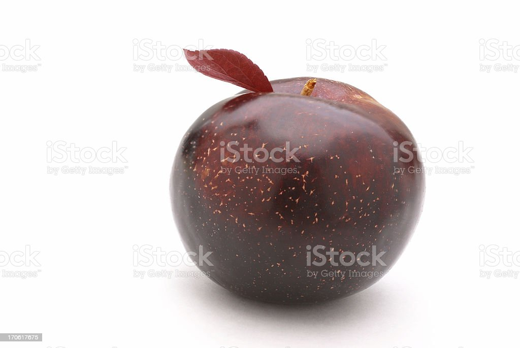 large red plum royalty-free stock photo