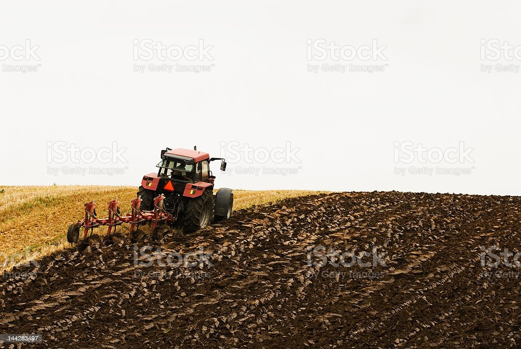 Large red tractor plowing in the field stock photo