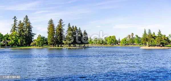 Large redwood trees on the shoreline of Lake Ellis, Marysville, Yuba County, California