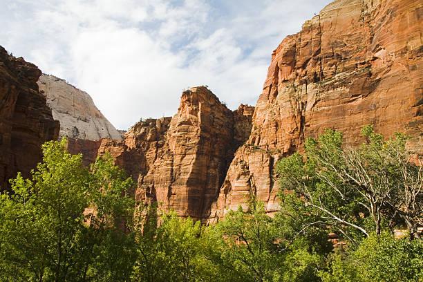Große Felsformation in Zion National Park – Foto