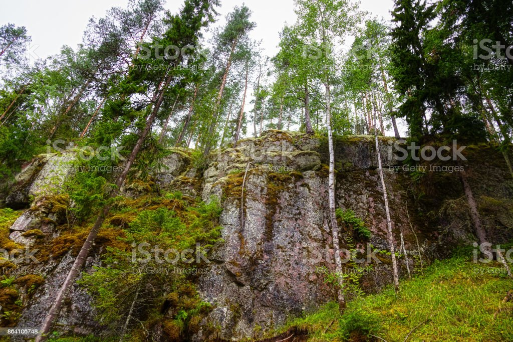 Large rocks in the woods royalty-free stock photo
