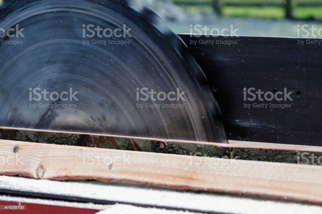 Eine große Sägeblatt schneidet einen Baumstamm auf Größe an ein Sägewerk. – Foto