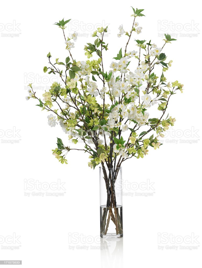 Large Spring Bouquet With Green And White Flowers On White