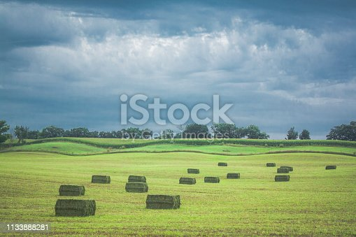 Newly baled large square bales wait to be picked up in a rolling field with dark blue storm clouds in the background in Wisconsin.