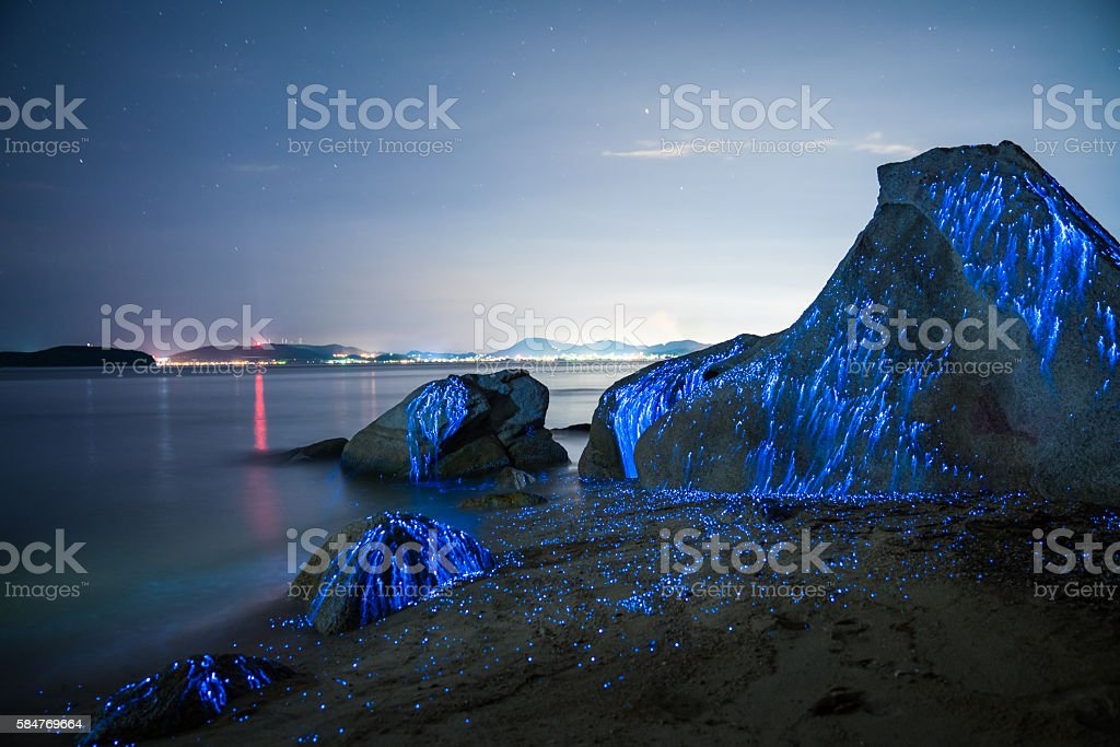 Large stones appear to weep on the beach stock photo