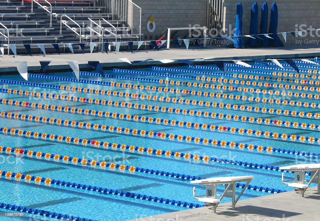 ... Large Swimming Pool With Multiple Lanes Stock Photo Empty Olympic Sized  ...