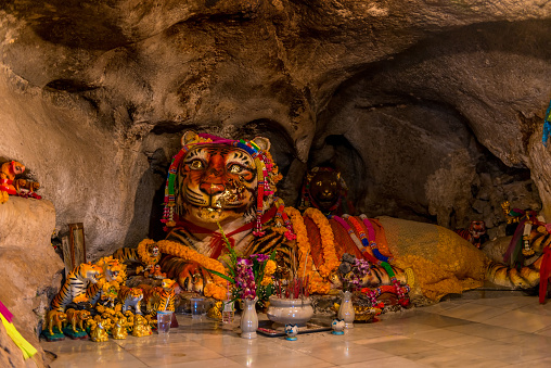 909806032 istock photo large tiger sculpture with religious attributes in a tiger cave in Krabi, Thailand 909806032