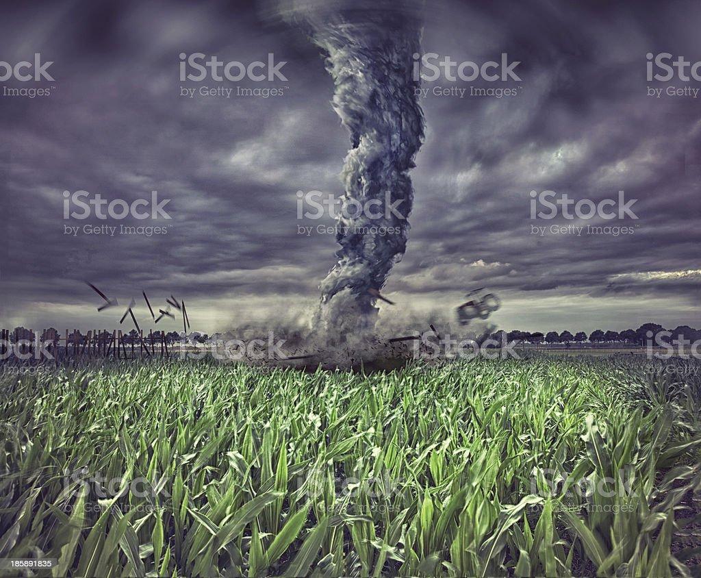 Large tornado wreaking havoc in a field stock photo