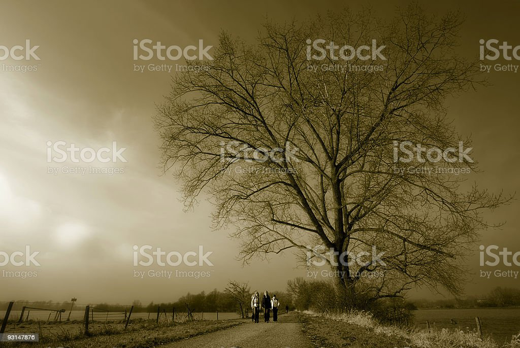 Large tree and small group of woman royalty-free stock photo