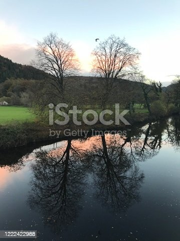 Large trees on a grass bank next to a river (River Conwy), reflecting with the sunset, mountains and a field behind the trees. Betws-y-Coed, Wales or Betws y Coed in North Wales. Taken in the evening