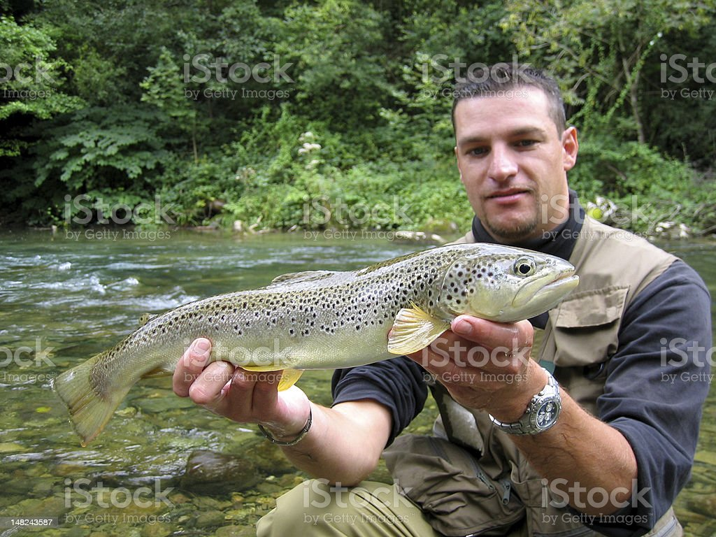 Large trout stock photo