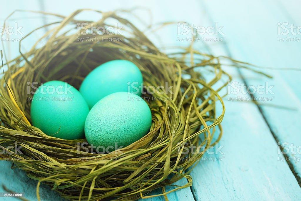 large turquoise eggs Lizenzfreies stock-foto