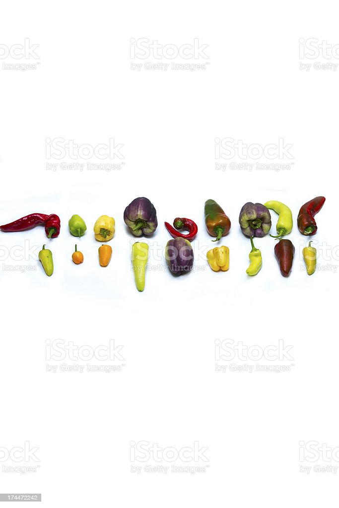 large variety of sweet peppers stock photo