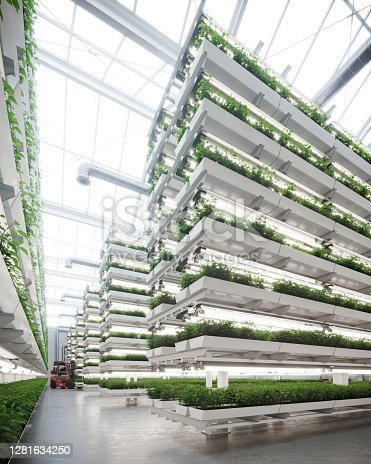 istock Large vertical farm inside a greenhouse image generated digitally 1281634250