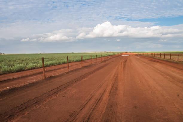 Large vou teu road and beautiful horizon in Brazil